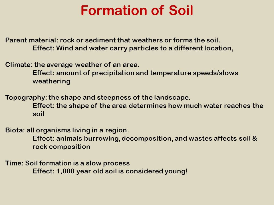 Formation of Soil Parent material: rock or sediment that weathers or forms the soil. Effect: Wind and water carry particles to a different location,