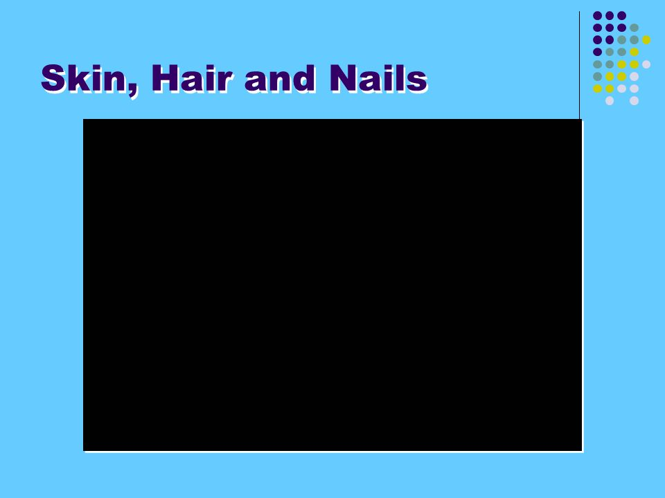 Skin, Hair and Nails