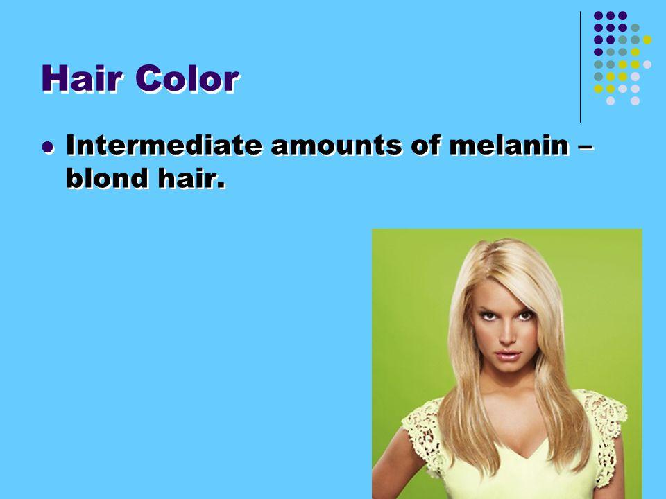 Hair Color Intermediate amounts of melanin – blond hair.