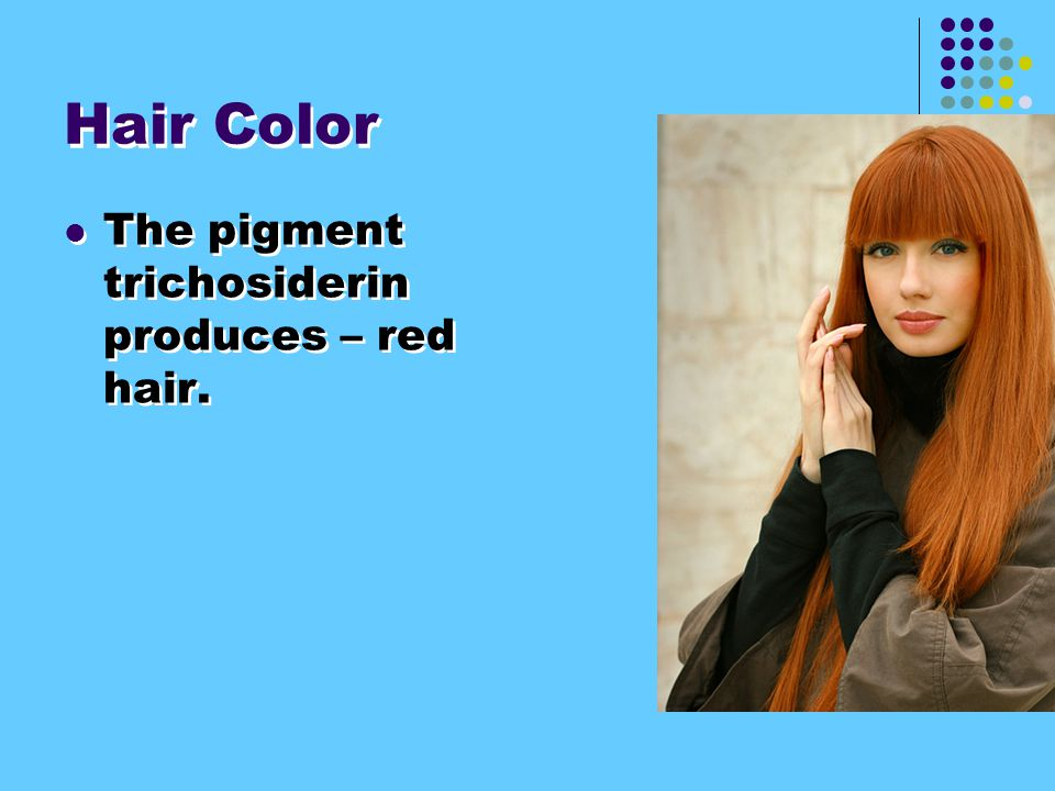 Hair Color The pigment trichosiderin produces – red hair.