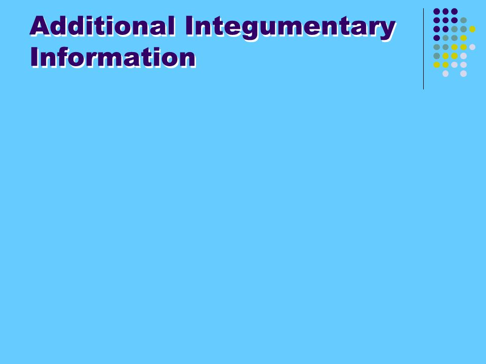Additional Integumentary Information