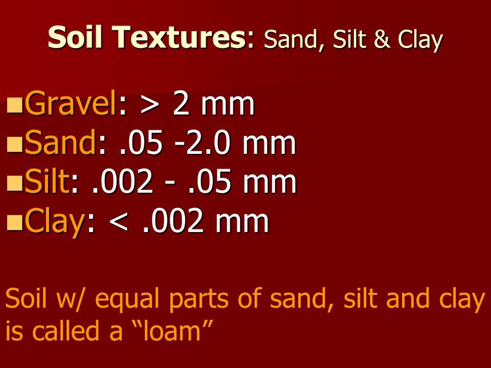 Soil Textures: Sand, Silt & Clay