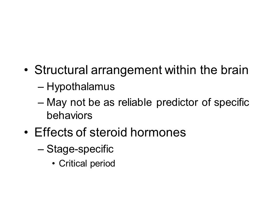 Structural arrangement within the brain