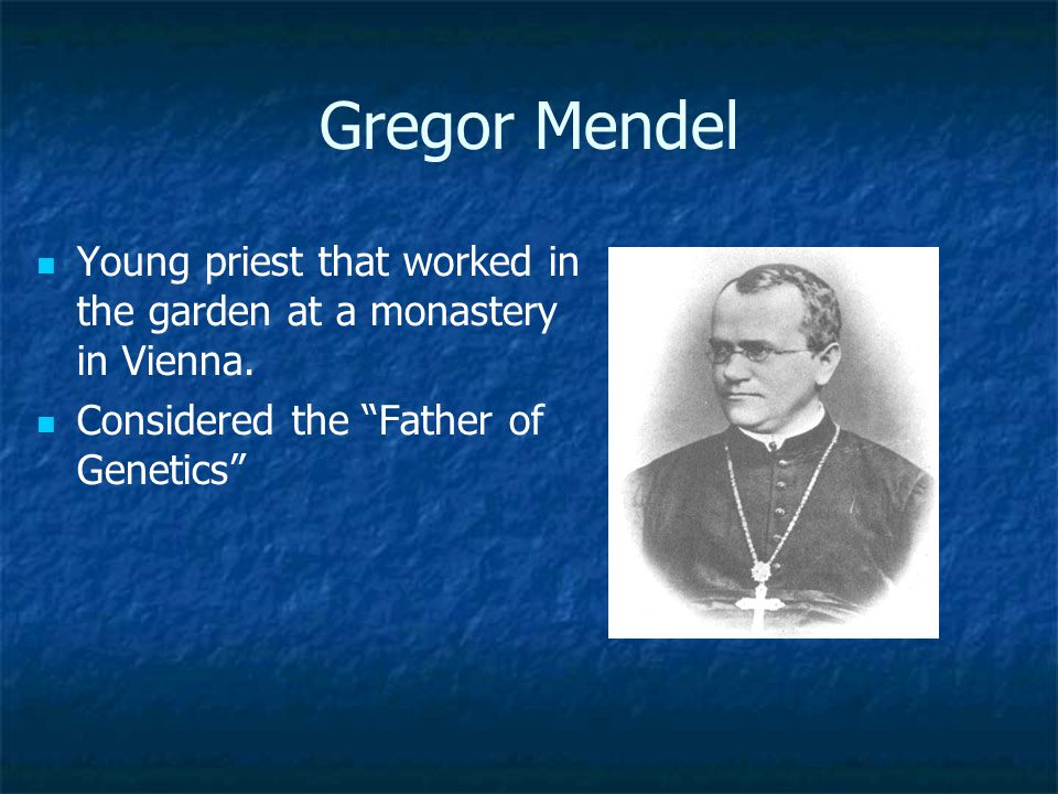 Gregor Mendel Young priest that worked in the garden at a monastery in Vienna.