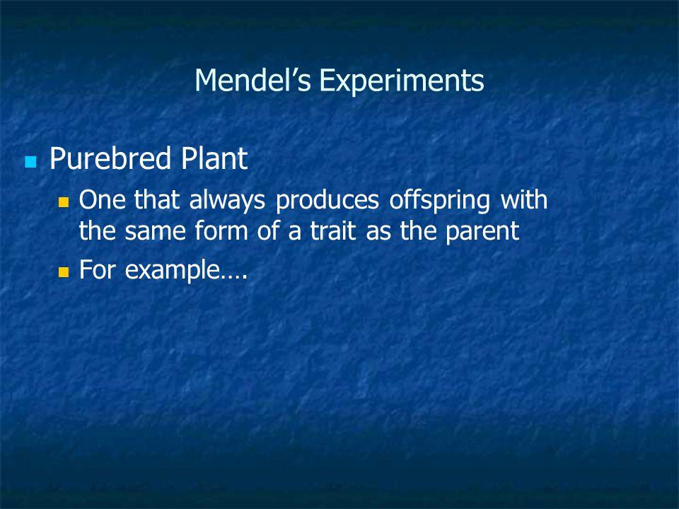 Mendel's Experiments Purebred Plant