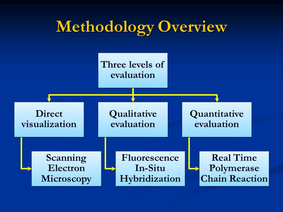Methodology Overview Three levels of evaluation Direct visualization