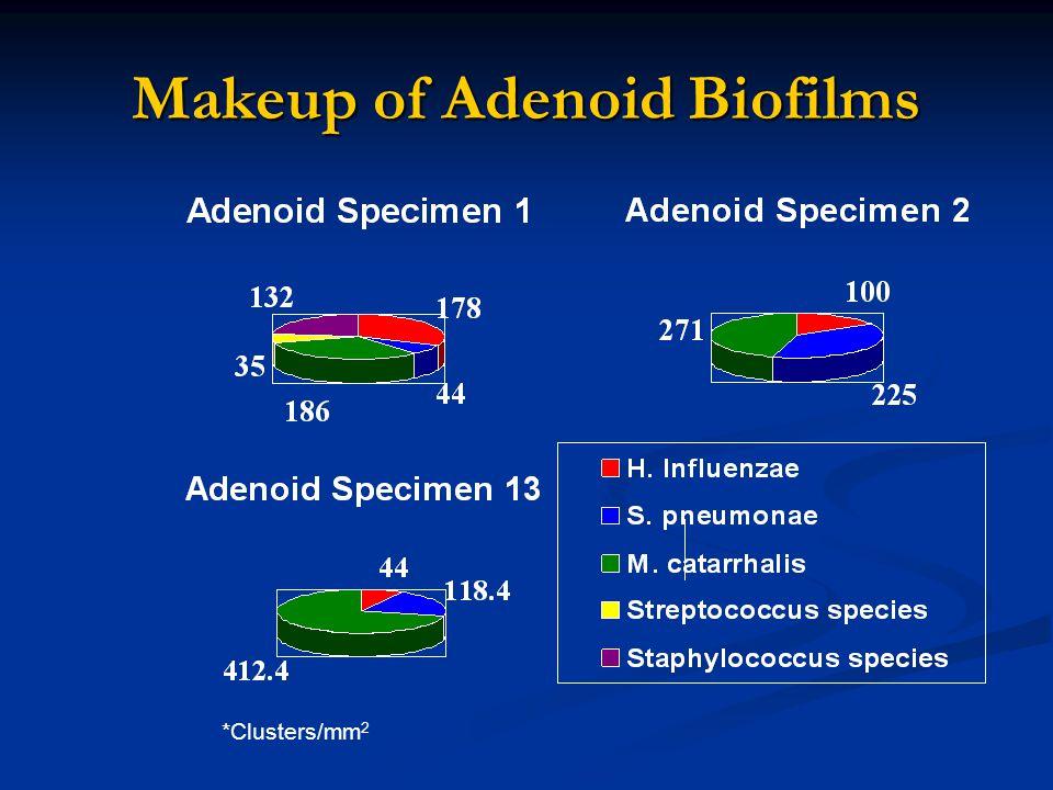 Makeup of Adenoid Biofilms