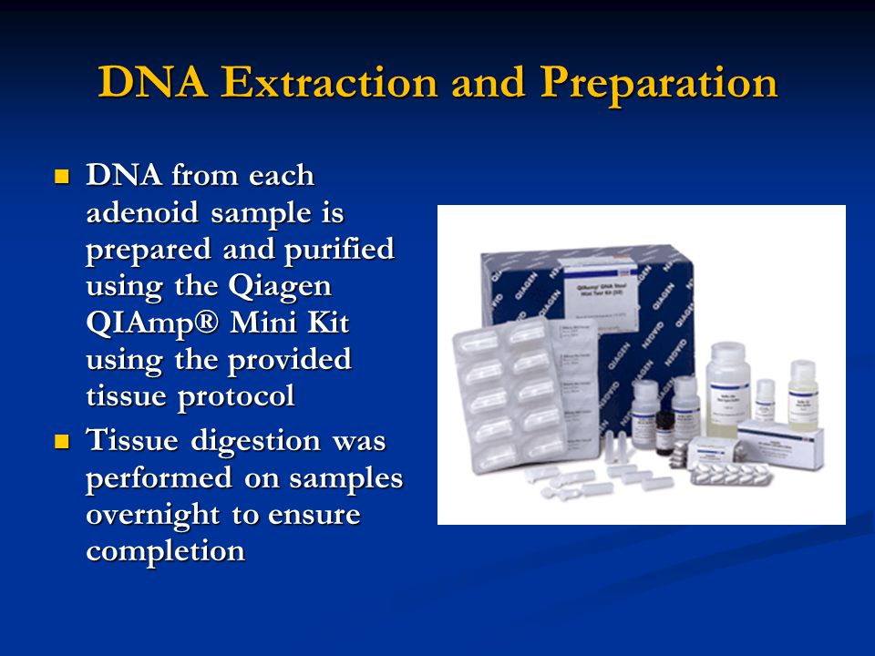 DNA Extraction and Preparation