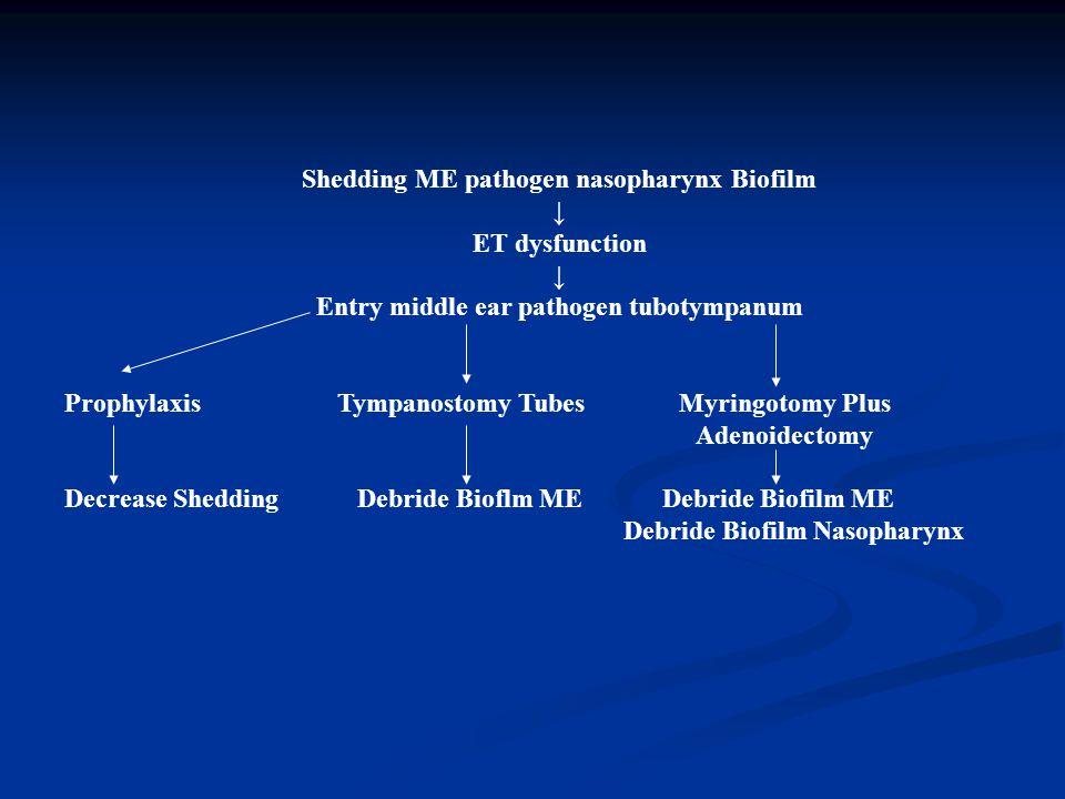 Shedding ME pathogen nasopharynx Biofilm ↓ ET dysfunction