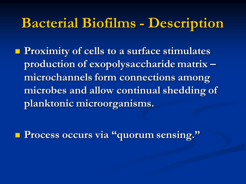 Bacterial Biofilms - Description