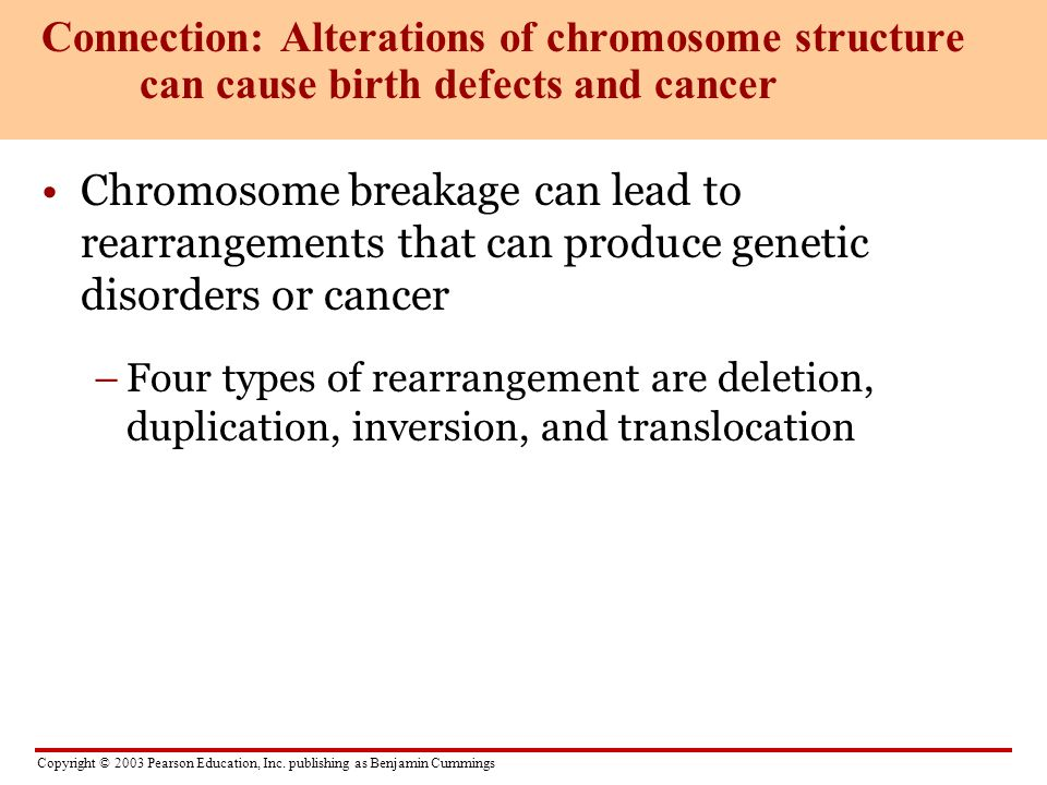Connection: Alterations of chromosome structure can cause birth defects and cancer