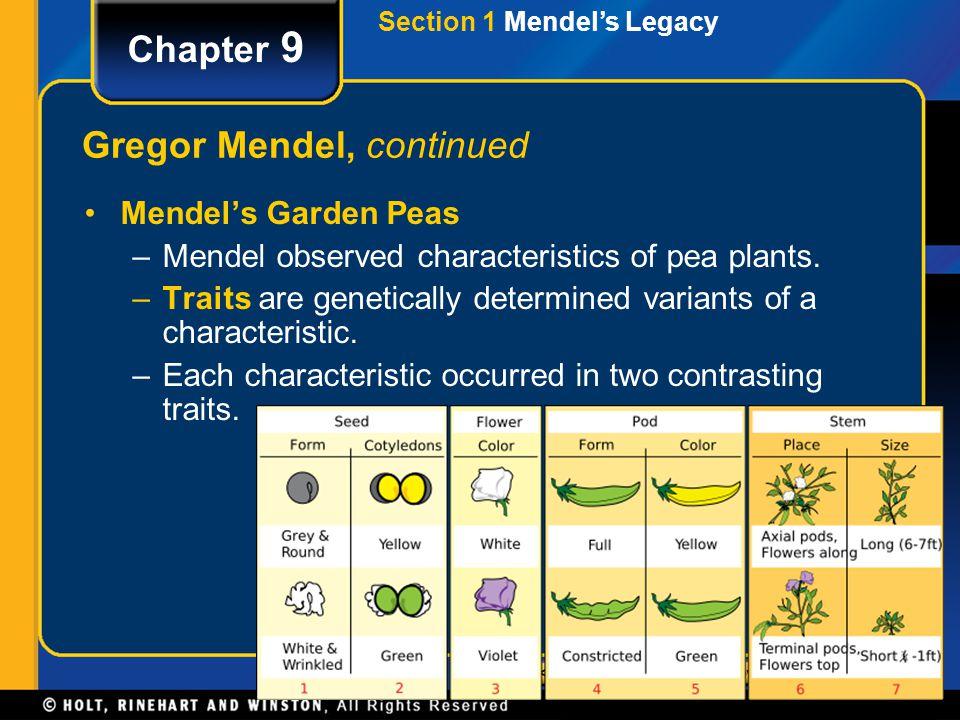 Gregor Mendel, continued