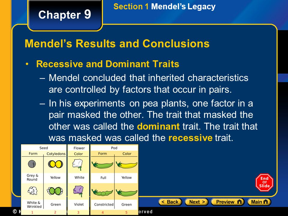 Mendel's Results and Conclusions