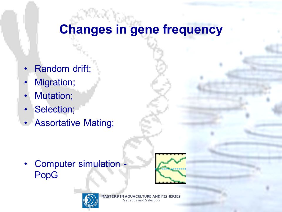 Changes in gene frequency