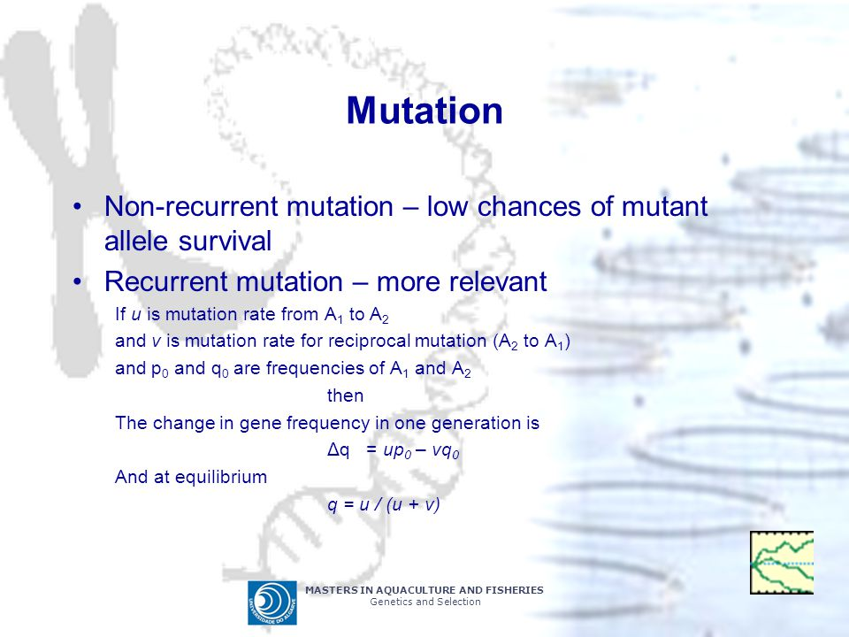 Mutation Non-recurrent mutation – low chances of mutant allele survival. Recurrent mutation – more relevant.