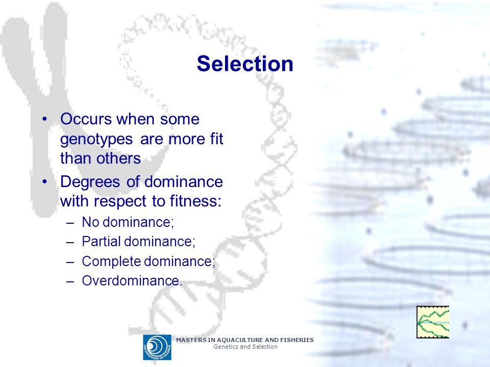 Selection Occurs when some genotypes are more fit than others