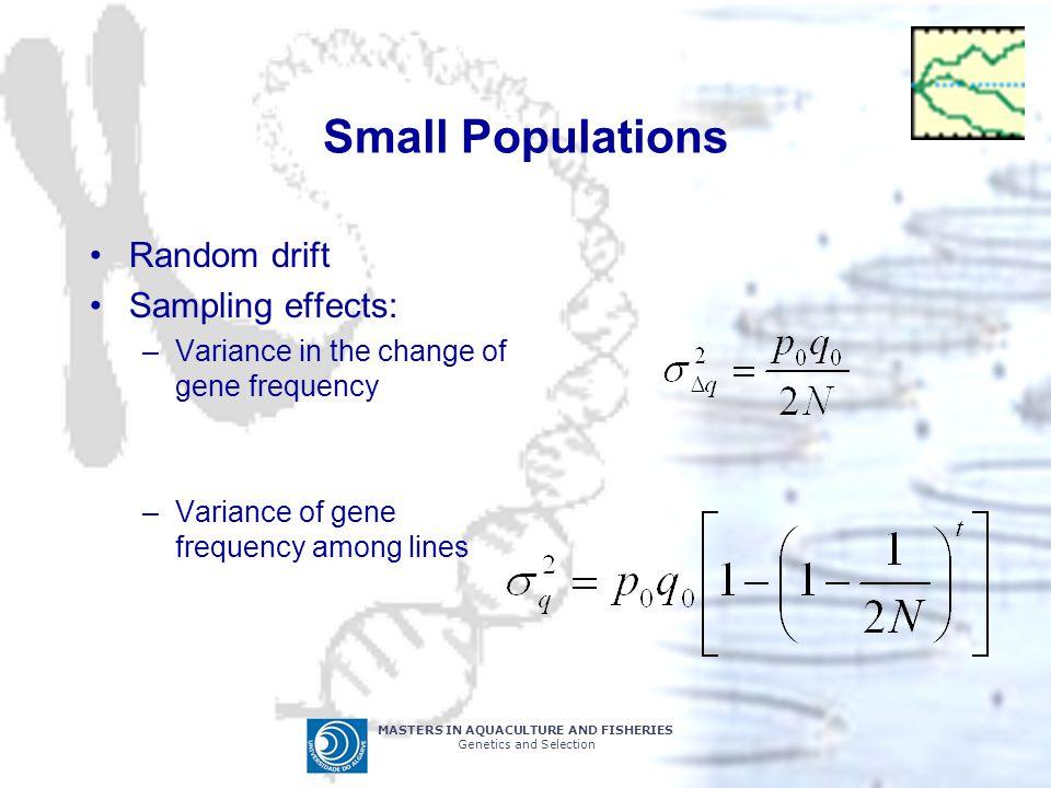 Small Populations Random drift Sampling effects: