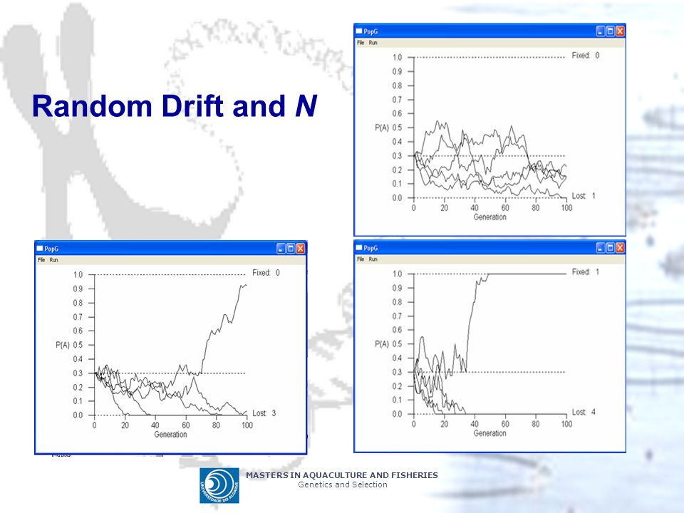 Random Drift and N MASTERS IN AQUACULTURE AND FISHERIES