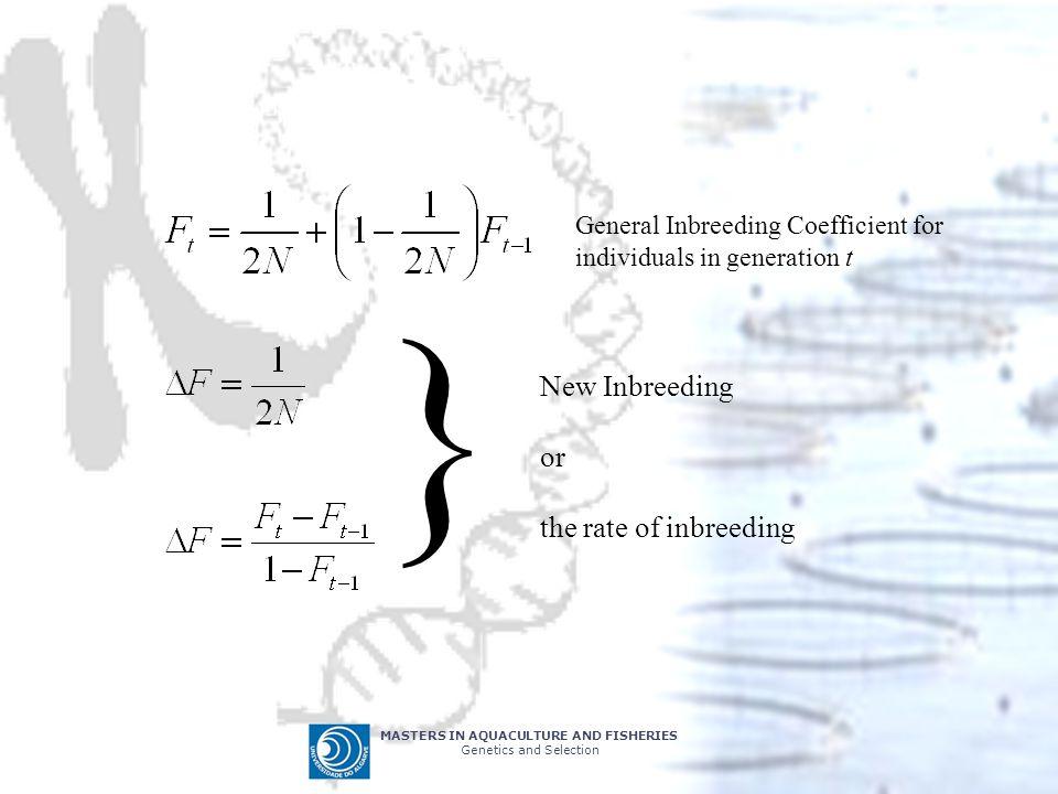 } New Inbreeding or the rate of inbreeding