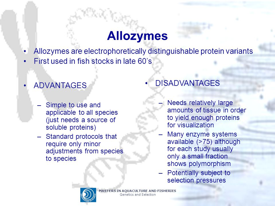 Allozymes Allozymes are electrophoretically distinguishable protein variants. First used in fish stocks in late 60's.