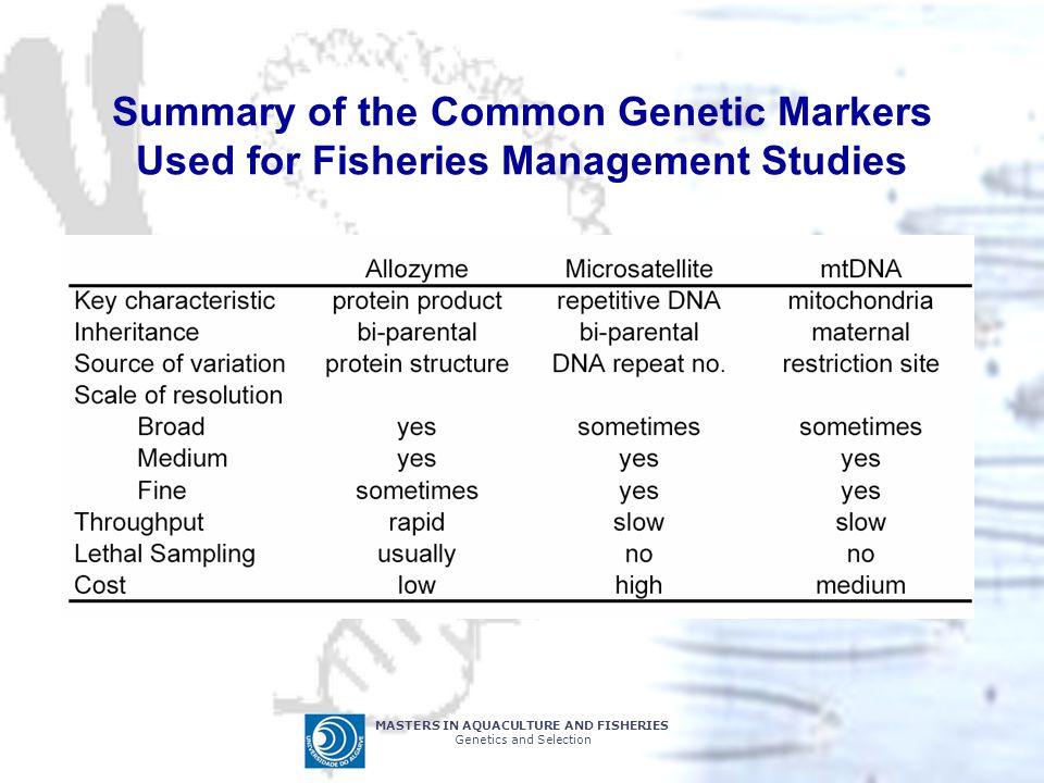 Summary of the Common Genetic Markers Used for Fisheries Management Studies