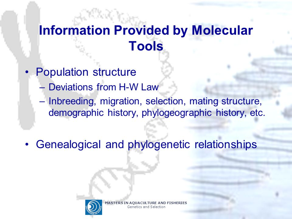 Information Provided by Molecular Tools