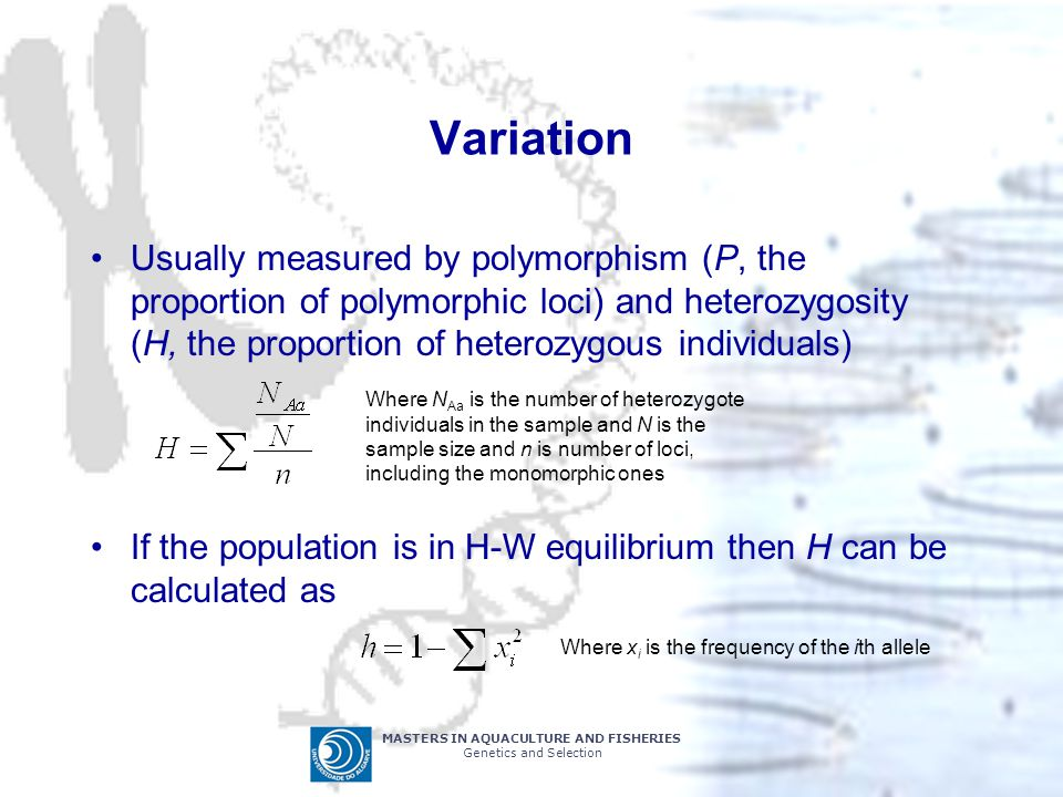 Variation Usually measured by polymorphism (P, the proportion of polymorphic loci) and heterozygosity (H, the proportion of heterozygous individuals)