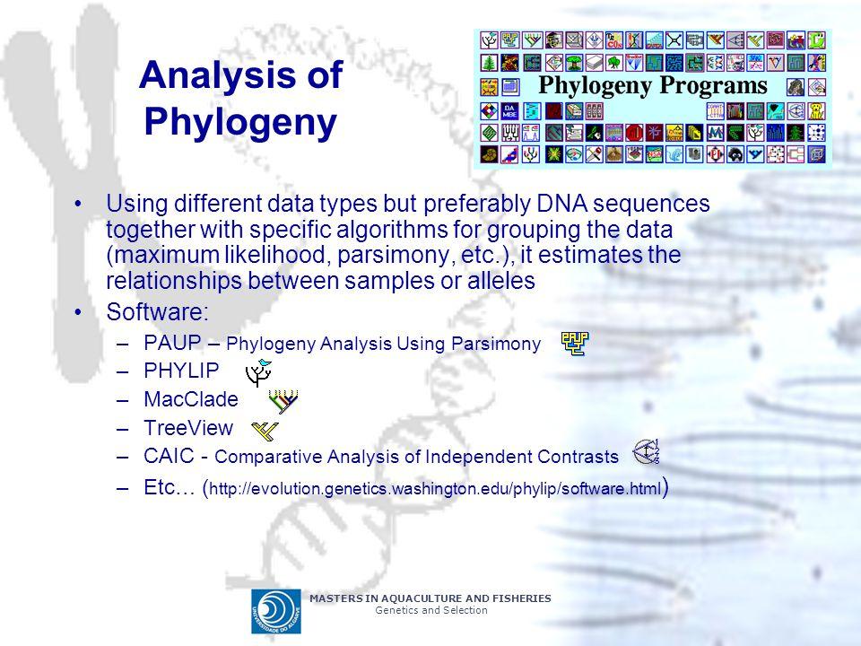 Analysis of Phylogeny