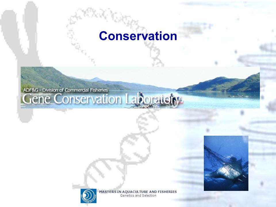 Conservation MASTERS IN AQUACULTURE AND FISHERIES
