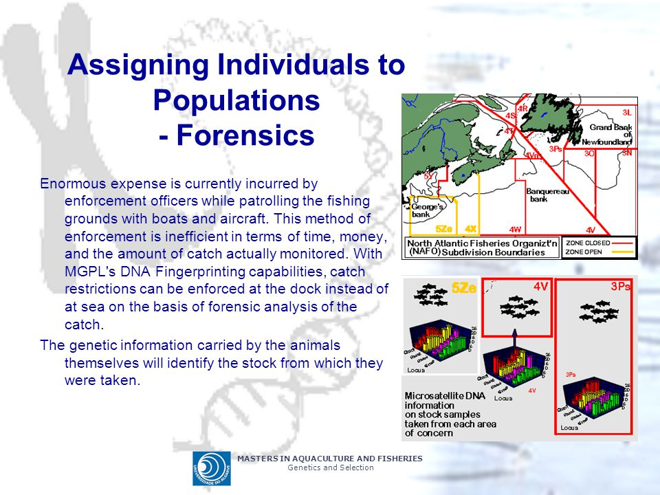 Assigning Individuals to Populations - Forensics