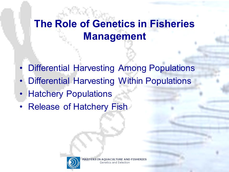 The Role of Genetics in Fisheries Management