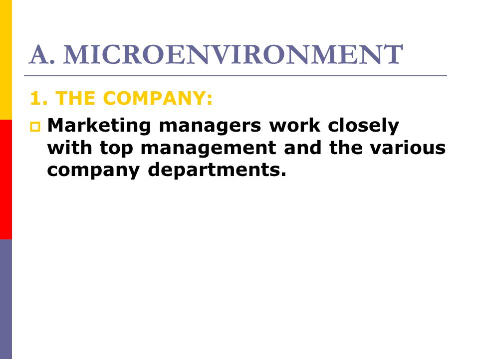 A. MICROENVIRONMENT 1. THE COMPANY: