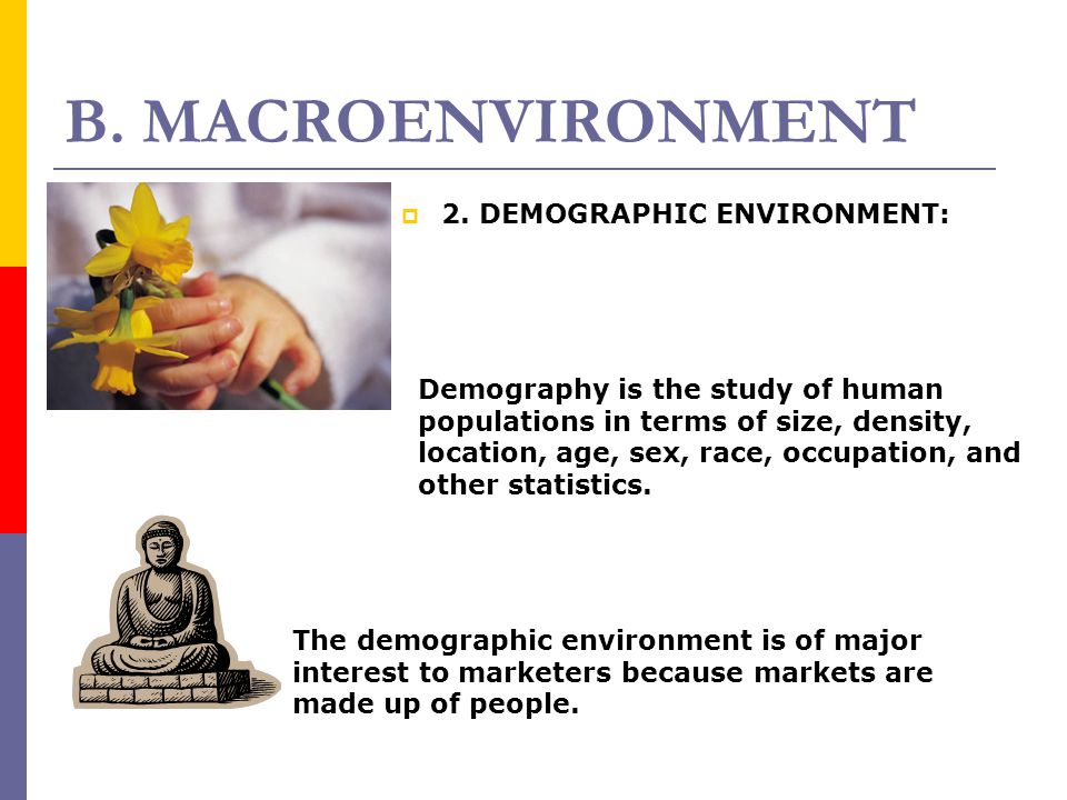 B. MACROENVIRONMENT 2. DEMOGRAPHIC ENVIRONMENT:
