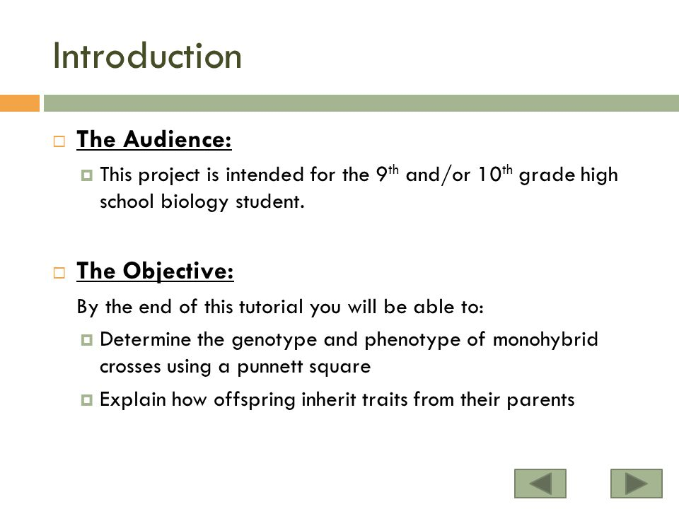 Introduction The Audience: The Objective: