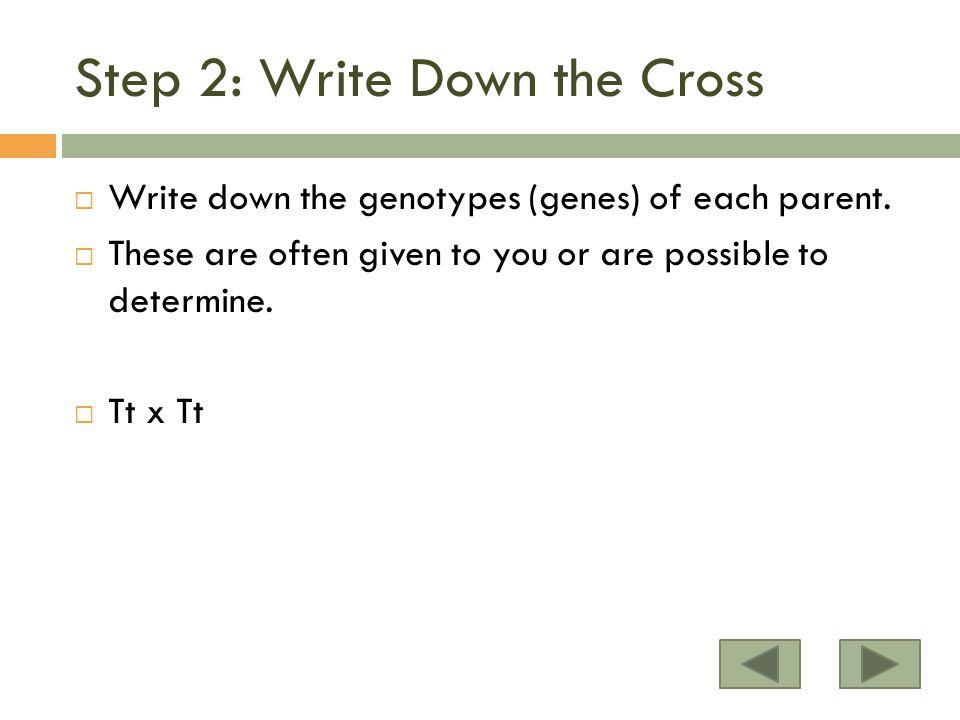 Step 2: Write Down the Cross