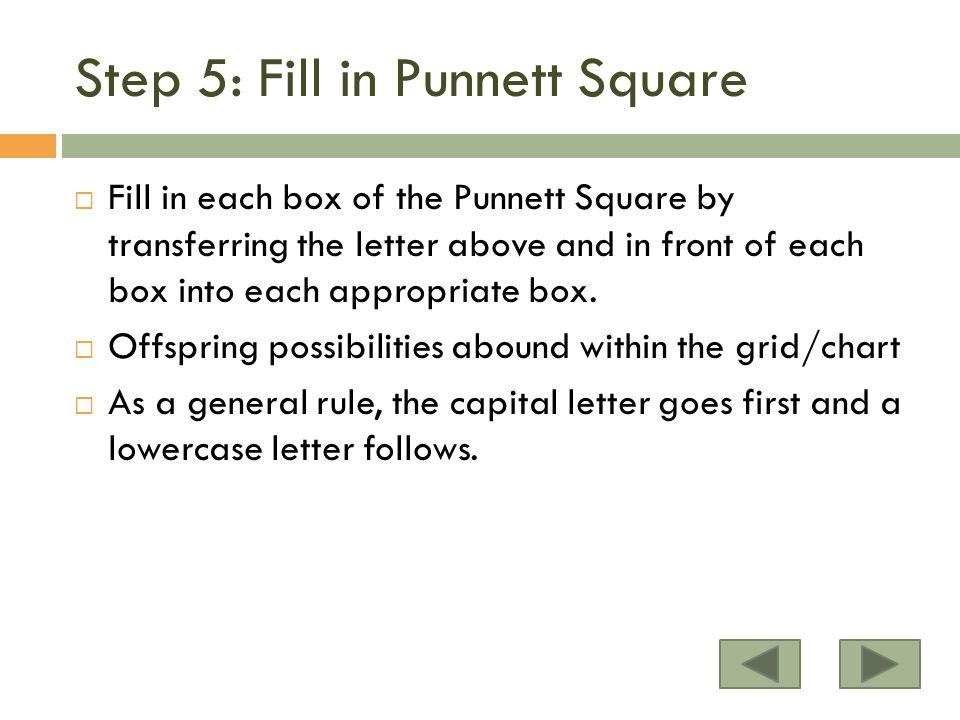 Step 5: Fill in Punnett Square