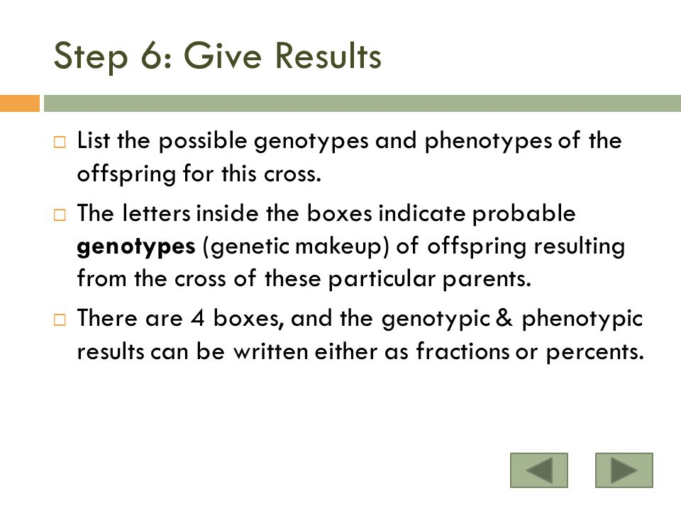 Step 6: Give Results List the possible genotypes and phenotypes of the offspring for this cross.