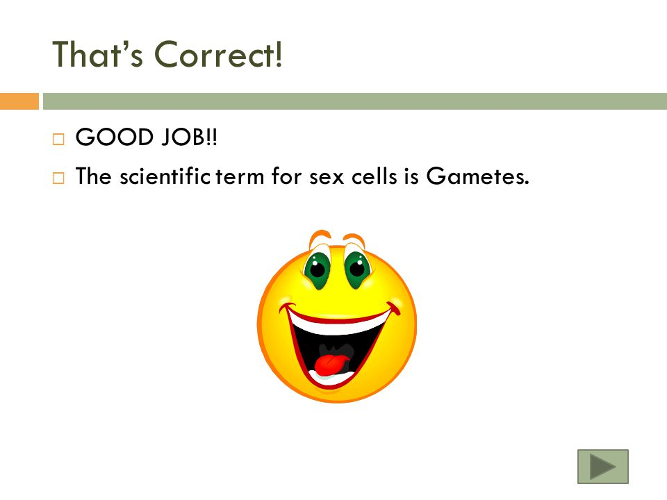 That's Correct! GOOD JOB!!