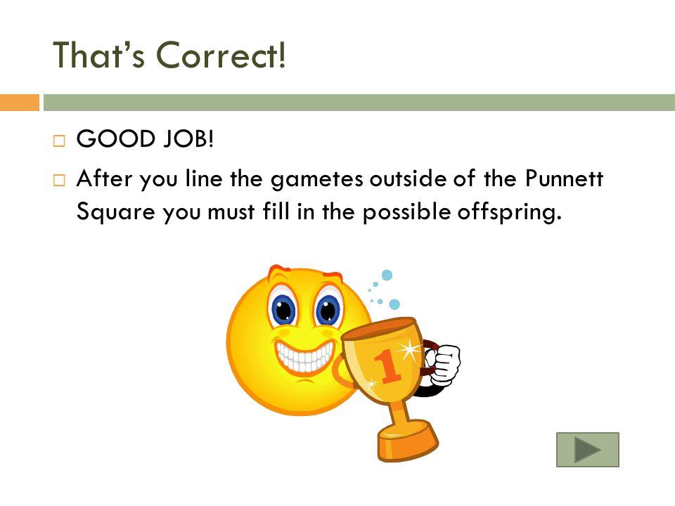That's Correct! GOOD JOB!