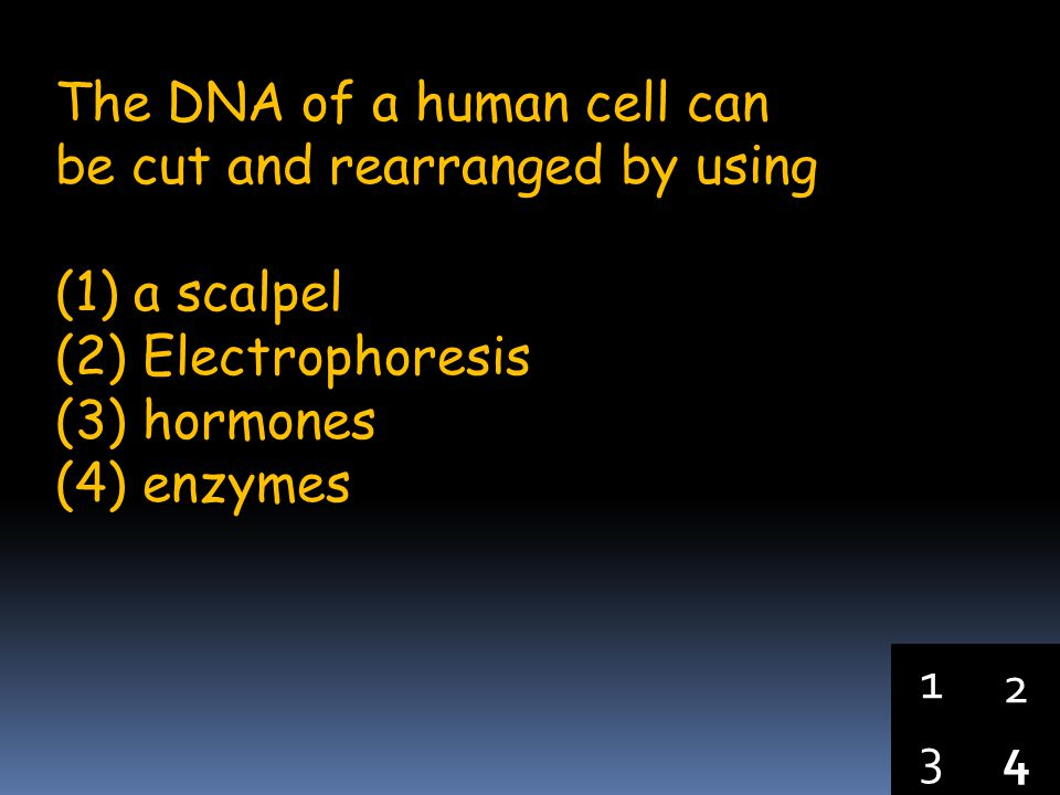 The DNA of a human cell can be cut and rearranged by using