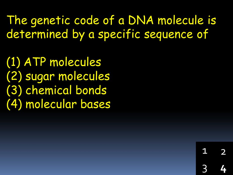 The genetic code of a DNA molecule is determined by a specific sequence of