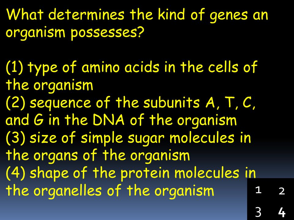 What determines the kind of genes an organism possesses