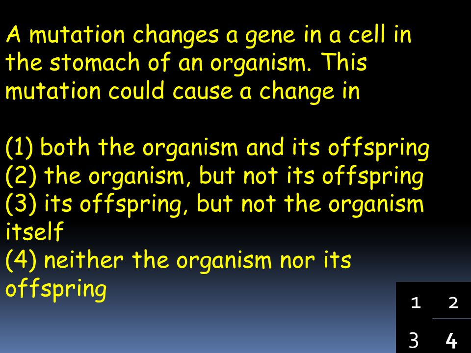 A mutation changes a gene in a cell in the stomach of an organism
