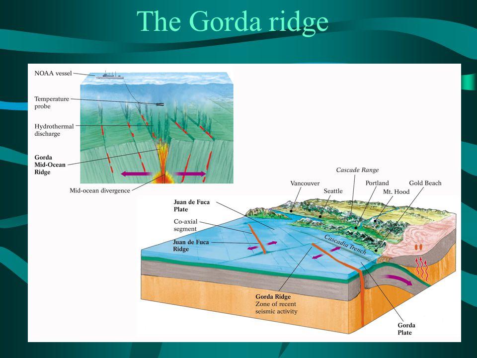 The Gorda ridge