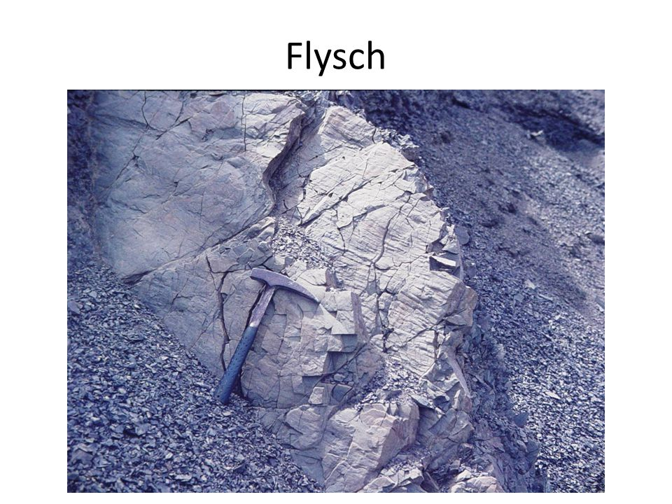 Flysch