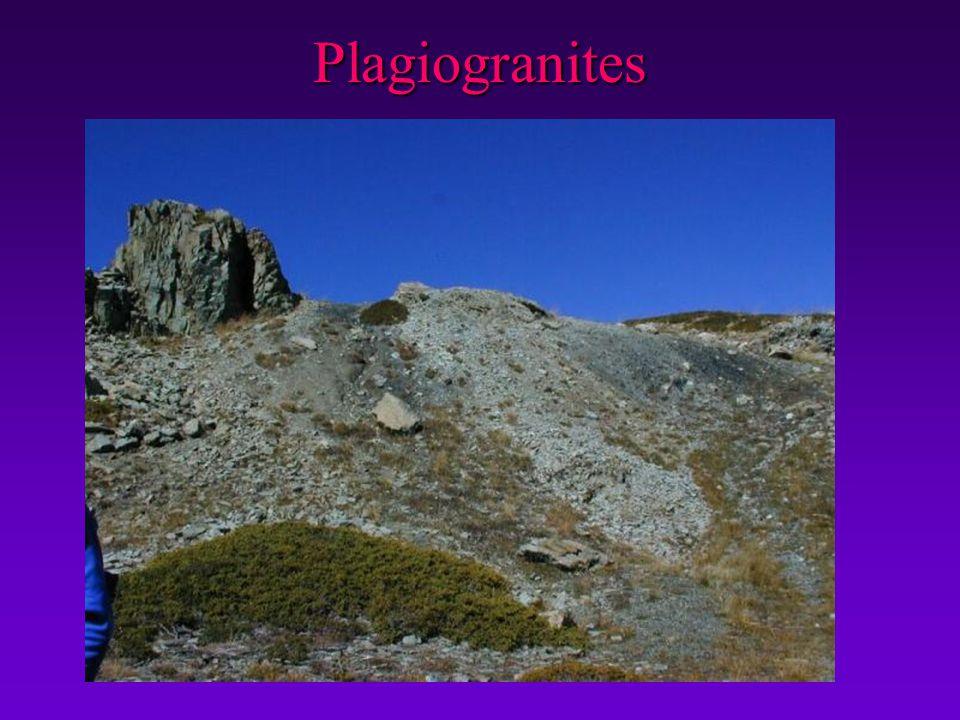 Plagiogranites