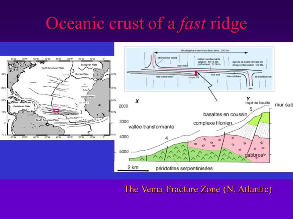 Oceanic crust of a fast ridge
