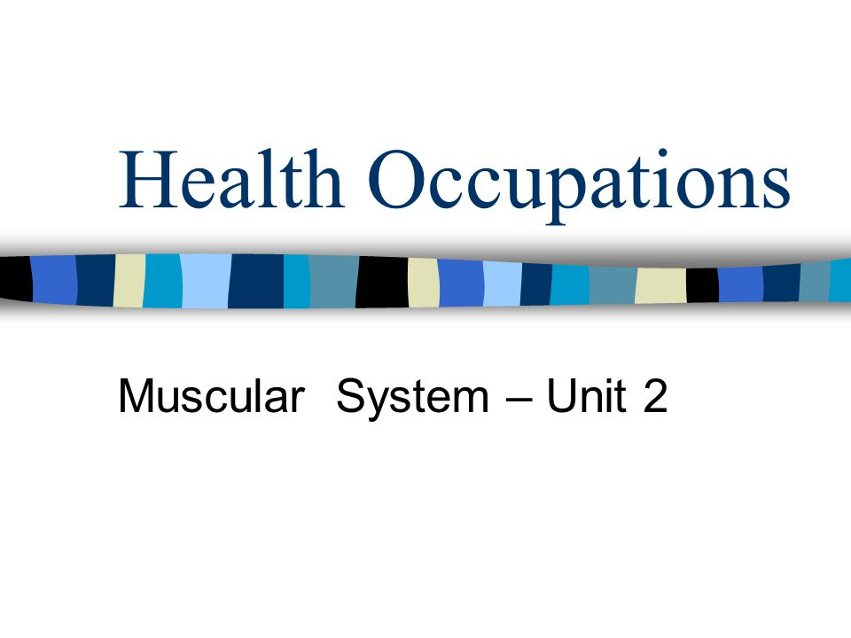 Health Occupations Muscular System – Unit 2