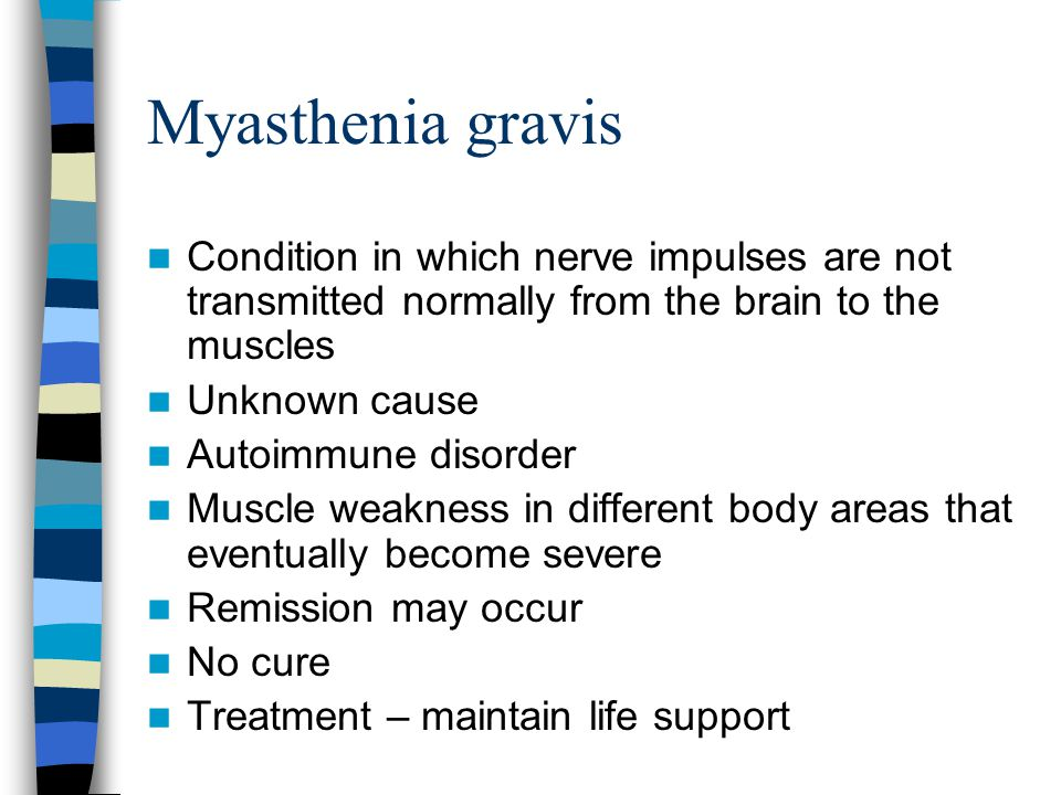 Myasthenia gravis Condition in which nerve impulses are not transmitted normally from the brain to the muscles.