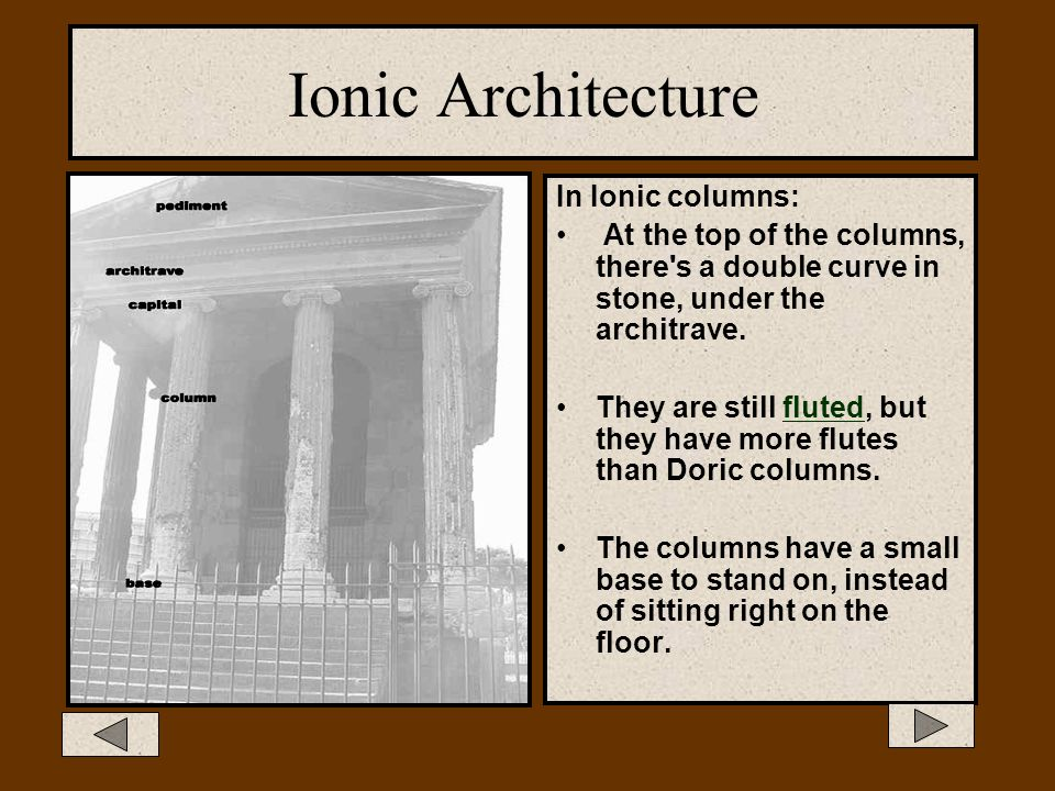 Ionic Architecture In Ionic columns: